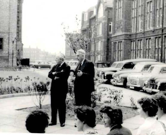 CohenSheehan1958